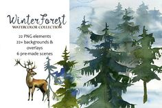 Winter Forest Watercolor Clipart  by whiteheartdesign on @creativemarket