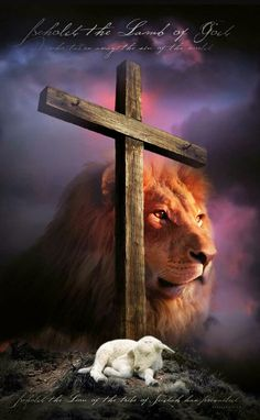 Every knee will bow before the Lion and the Lamb. Romans 14:11 Phillipians 2:10-11 Rev 5:5