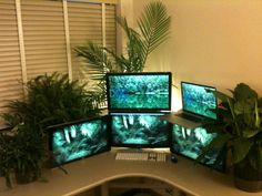 Self-described plant station. Love the setup - because plants are fantastic.