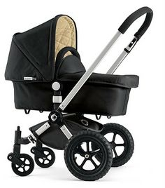 Bugaboo Frog stroller in Black. [bought this in red, gently used on craigslist for 1/6 of the retail price]