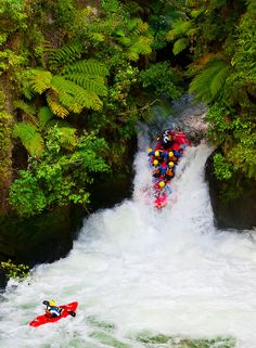 Kaituna River, New Zealand    A kayaker watches as a raft from River Rats Rafting goes off the 7 meter (21 foot) Tutea Falls on the Kaituna River (the highest commercially rafted waterfall in the world), near Rotorua, on the North Island of New Zealand.