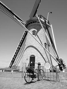 """The Lily"" Dutch Windmill"
