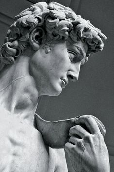 David by Michelangelo, at the Galleria Dell´Accademia, Florence, Italy. Roman Sculpture, Art Sculpture, Sculptures, Michelangelo Sculpture, Sculpture Romaine, Greek Statues, Italian Statues, Ancient Greek Sculpture, Greek Art