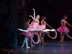 Ballerina Skylar Brandt Basically Snacks All Day And I'm Here For It