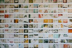 polaroid wall paper