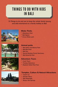 Travel tips: Things to Do in Bali with Kids- Infograph - Toddlers on Tour