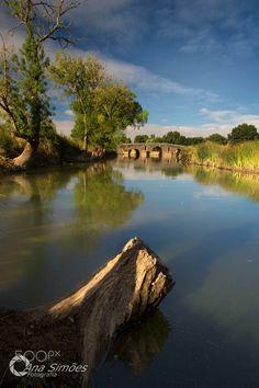 Alone - Ponte Romana de Monforte
