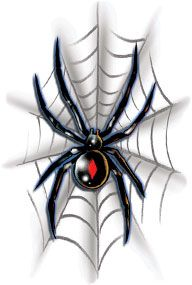 Black Widow On Web Halloween Costume Makeup Temporary Tattoo,$0.66