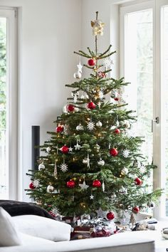 Inexpensive Christmas Tree Decorating Ideas - FarmFoodFamily - Christmas Inexpensive Christmas Tree Decorating Ideas – FarmFoodFamily Decorating Your Holiday Tree Like a Pro Cheap Christmas Trees, Beautiful Christmas Trees, Noel Christmas, Outdoor Christmas Decorations, Holiday Tree, Holiday Ornaments, White Christmas, Natural Christmas Tree, Christmas Cactus