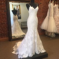 Bristol by Sottero Midgley is one of our favorite Spring 2017 wedding dresses! The lace and low back detail are perfect for your wedding day! Available NOW at our Farmington, MO boutique. Wedding Goals, Wedding Attire, Wedding Day, 2017 Wedding, Wedding Dreams, Wedding Stuff, Dream Wedding Dresses, Bridal Dresses, Bridesmaid Dresses