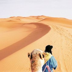 If you are Luke Skywalker who has a call to an adventure or just an ordinary traveler who loves to meet friendly people from different cultures while on the road Morocco will not let you down. . . . . . #morocco #passionpassport #joysofearth #beautifuldestinations #travel #travelphotography #weliketotravel #roamplanetearth #travelandlife #inspiredbyyou #lonelyplanet#lifeofadventure #travelstoke #travelphotos #iamAtraveler #exploretocreate #canon #journey #travel…