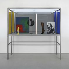 JOSEPHINE MECKSEPER The Story of Mankind, 2014 Mixed media in stainless steel and glass vitrine with fluorescent lights and acrylic sheeting 80 × 80 × 20 in