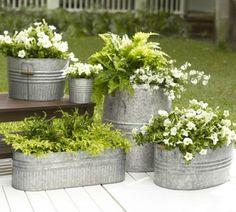 Me encanta la combinación de plantas con flores en planteros de zinc