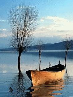 Evanbridge: Awakening inspiration - old row boat. Amazing Nature Photos, Cool Photos, Beautiful Pictures, Landscape Photography, Nature Photography, Old Boats, Small Boats, Boat Art, Boat Painting
