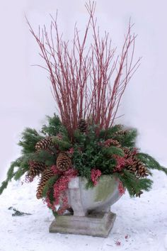 Winter Container: Paper Birch Tips; Black Spruce; Paper Birch Stems; Norway Spruce Cones; Norway Pine; Sugar Pine Cones; Manzanita Branches