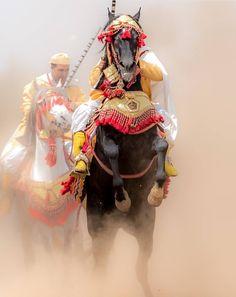 Animals And Pets, Cute Animals, Arabian Costume, Visit Marrakech, Horse Facts, Desert Tour, Arabian Nights, African History, Beautiful Horses