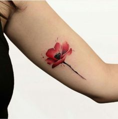 Poppy tattoo - a field of 52 models in photos- tattoo-flower-flower-tattoo-black-and-red-tatoo-poppy-watercolor-colors -