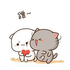 Cute Love Pictures, Cute Love Gif, Cute Cat Gif, Cute Images, Cute Cats, Cute Bear Drawings, Kawaii Drawings, Chibi Cat, Cute Chibi