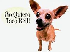 Bring the Taco Bell Dog back!!