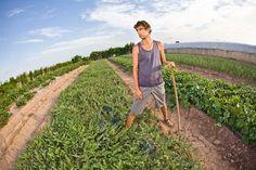 5 motivos para emprender en agricultura