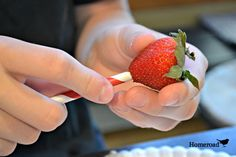 "That is ""straw"" berries you know!.... http://www.homeroad.net/2013/06/a-tip-for-hulling-strawberries.html"