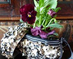 Blommor och sånt med koloni: Underbara onsdag. Påsk