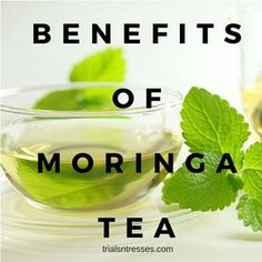 While detox teas and skinny teas may be all the rage theres a tea I've just stumbled on that I have to share. Here are the benefits of moringa tea. Calendula Benefits, Matcha Benefits, Coconut Health Benefits, Moringa Benefits, Curcuma Benefits, Cucumber Benefits, Tea Benefits, Safe Cosmetics, Tomato Nutrition