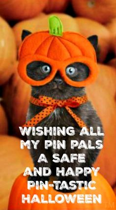Wishing Everyone A Safe and Happy Pin-Tastic Halloween <3 Tam <3