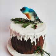 A place for people who love cake decorating. Bird Cakes, Love Cake, Cake Decorating, Desserts, Food, Tailgate Desserts, Deserts, Essen, Postres