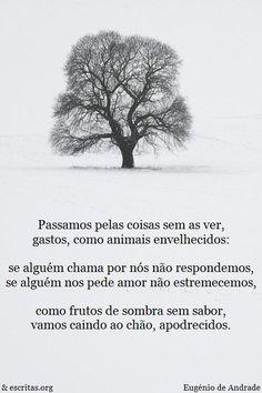 Poesia de Eugénio de Andrade