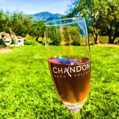 I love a day that includes bubbles and beautiful vistas. Cheers!  #TheEpicureanTraveler #DomaineChandon #Chandon #wine #sparklingwine #winery #winetasting #winetravel #VisitNapaValley #NapaValley #Yountville #VisitCalifornia #California #CaliforniaDreamin #travel #travelgram #instatravel #wanderlust #roadtrip #travelblogger #traveldeeper #tlpicks #bubbles #girlstravel by erinklema