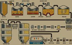 The Brewing Process #brewing   #beer   #beerlovers