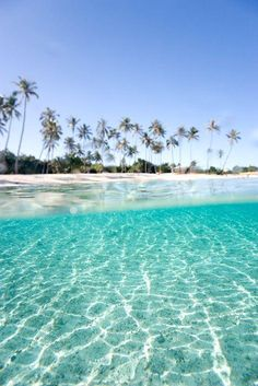 #travel #travelphotography #travelinspiration #Maldives #YLP100BestOf #wanderlust