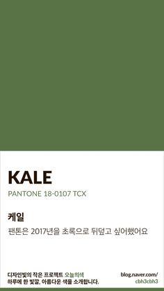 Pantone Colour Palettes, Pantone Color, Colour Pallete, Color Schemes, Colour Dictionary, Pantone Green, Colour Board, Color Swatches, Color Names