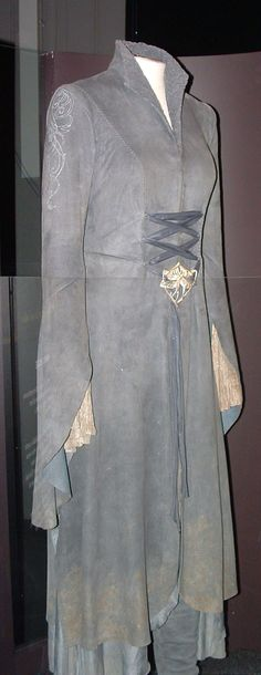 The riding dress Arwen wears while feeling with Frodo from the Nazgul in The Lord of the Rings: The Fellowship of the Ring.