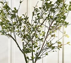 Faux Green Spring Branch #potterybarn