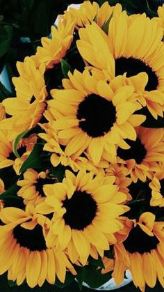image discovered by Sweet Strawberry. Discover (and save!) your own images and videos on We Heart It