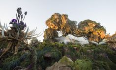 Disney World RUMOR |  Animal Kingdom to Offer Nightly Extra Magic Hours During AVATAR Opening Summer