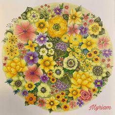 Coloring Book Art, Free Coloring, Colouring, Pencil Shading, Wonder Book, Johanna Basford, Gallery, Flowers, Artwork