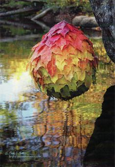 leaf ball over water by sally j. smith certainly with a nod to andy goldsworthy