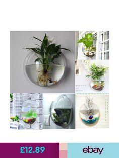 Planters & Pots #ebay #Home, Furniture & DIY