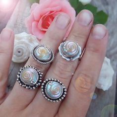 By The Sea Ring - Silversmithed Umbonium Shell Ring