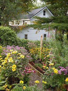 How amazing is this cutting garden, overflowing with echinacea, coneflowers, and false sunflowers?