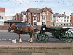 Travel around Blackpool by horse and carriage. Blackpool Uk, Blackpool Pleasure Beach, Horse Carriage Rides, Drainage Channel, Irish Sea, Travel Around, Seaside, Tower, England