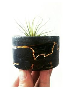 Black Concrete Air Plant HolderModern planterCactus | Etsy Concrete Crafts, Concrete Projects, Concrete Path, Concrete Table Top, Resin Crafts, Concrete Planters, Modern Planters, Diy Planters, Painted Flower Pots
