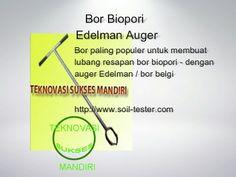 Bor biopori - Edelman  Auger - Bor belgi