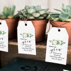 Watch me grow tags, succulent tags, baby shower favor tags, … – Baby Shower Ideas Boho Baby Shower, Baby Shower Floral, Shower Bebe, Baby Boy Shower, Baby Shower Tags, Rustic Baby Shower Decor, Baby Shower Green, Diy Baby Shower Decorations, Baby Shower Party Favors