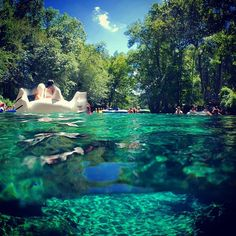 Summer in Florida  #bluespring #ginniesprings #underwaterphotography #dslrvideo…