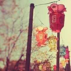paper chinese lanterns in pastel colors