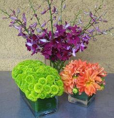 http://www.daniellesflowersslo.com/publishImages/Tropical-Flower-Arrangements~~element52.jpg